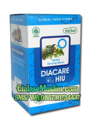 DIACARE (Diabetes) Herbal Indo Utama